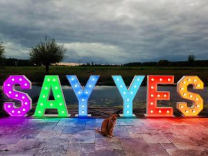 LED lichtletters huren SAY YES